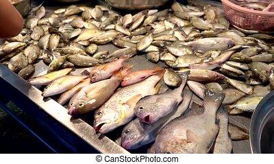Traditional Thai sea food market, with fresh seafood