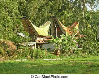 Traditional Toraja houses - Rantepao - Sulawesi island - Indonesia.