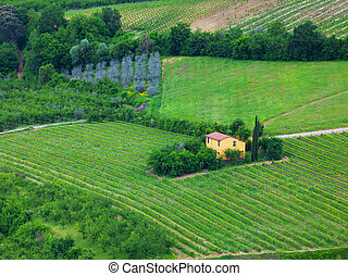 Traditional Tuscan landscape with vineyards and the small yellow house