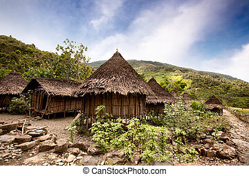 Traditional Village - A traditional village in Papua,...