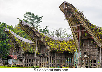 Outstanding local architecture, boat shaped rooftop and traditional decoration with buffalo horns as symbol of wealth in a traditional village of Tana Toraja, South Sulawesi, Indonesia.