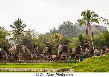 Row of wooden buildings in traditional village with typical boat shaped roofs in Tana Toraja, South Sulawesi, Indonesia.