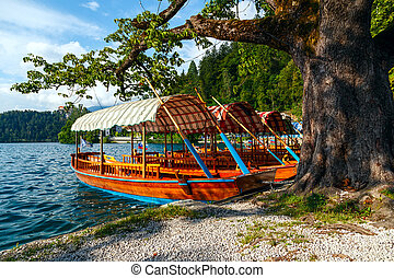 Traditional wooden boats Pletna on lake Bled