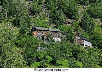 Traditional wooden houses near Geiranger, Norway