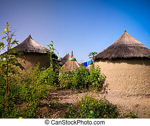 traditionele , ooi, mensen, dorp, tatale, gebied, togo