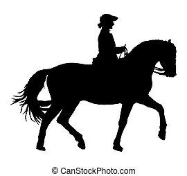 traditionele , paardrijden, paarde