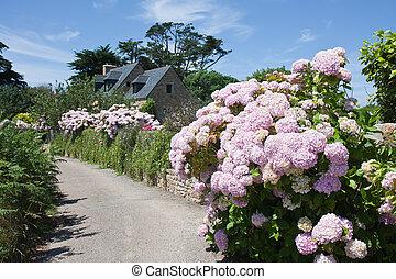 traditionele , woning, tuin, bretagne, frankrijk