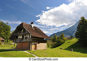 traditionell, schweizisk, jaktslott