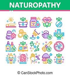 traditionell, vektor, sätta, medicin, naturopathy, ikonen