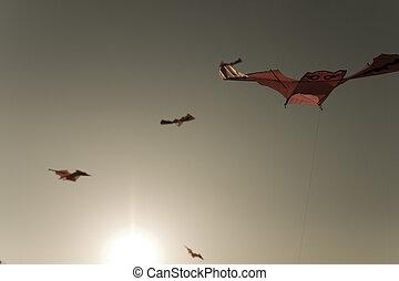 traditionelle , fliegendes, kultur, süden, papier drache, ...