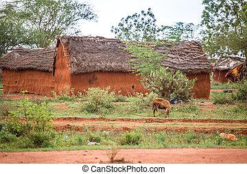 traditionelle , häusser, kenia, schlamm, afrikanisch