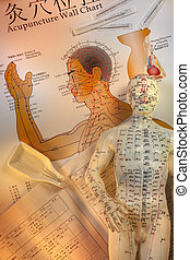 traditionnel, acupuncture, chinois