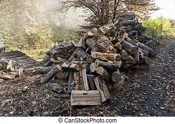 traditionnel, charbon de bois, production, manière, forêt