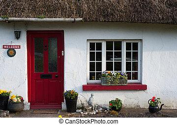 traditionnel, couvert chaume, irlandais, petite maison