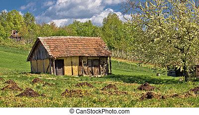 traditionnel, petite maison, vieux, printemps, vue