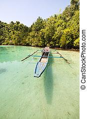 tradizionale, barca
