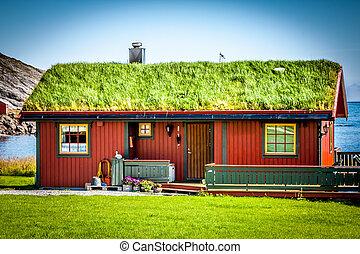 tradizionale, casa, vecchio, norvegia