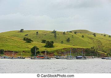 tradizionale, isola, nazionale, indonesia, nusa, ancorato, parco, pesca, komodo, barche, tenggara