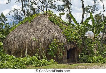 tradizionale, montagna, capanna, villaggio