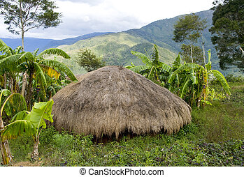 tradizionale, montagna, indonesia., papua, villaggio