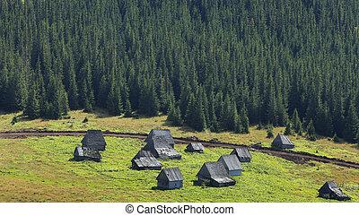 tradizionale, montagna, transylvania, villaggio