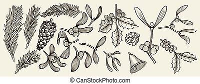 tradycja, gwiazdkowa ozdoba, rośliny