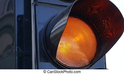 Traffic Light close up