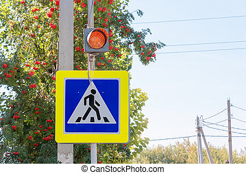 traffic light on a pedestrian crossing
