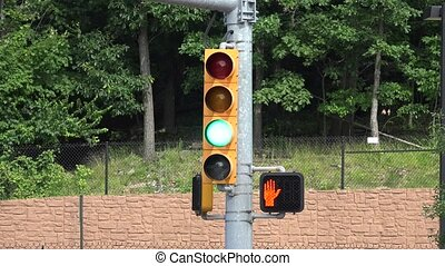 Traffic Light or Signal