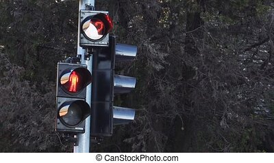 Traffic light signalization or semaphore turning from red to...