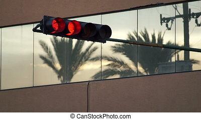 Traffic Light Turns Green Palm Tree - Static evening shot of...