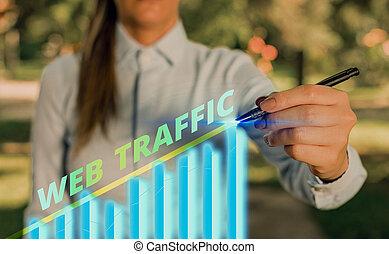 traffic., sieć, kwota, tekst, ogólnie przyjęty, czas przeszły czasownika 'send', wizytatorzy, pismo, treść, pojęcie, dane, website.