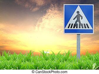 Traffic sign on green grass