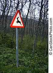 signal - traffic signal