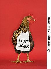 tragen, lustiges, huhn, zeichen., vegan