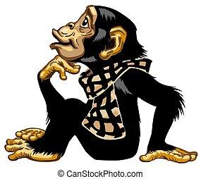tragen, schimpanse, karikatur, schal