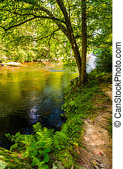 Trail along Gunpower Falls, in Baltimore County, Maryland.