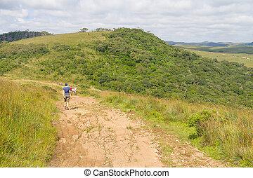 Trail at Fortaleza Canyon