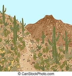desert, cactus and mountains - Trail in Arizona. ...