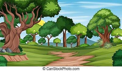 Trail in the forest landscape scene