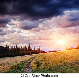 Trail in the mountains of forest. Evening sky with clouds