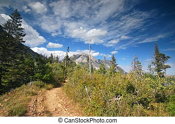 Waterton National Park in Canada - Trail in the mountains of...