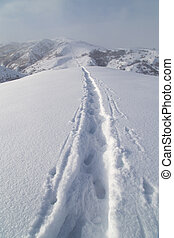 Trail in the snow in the mountains