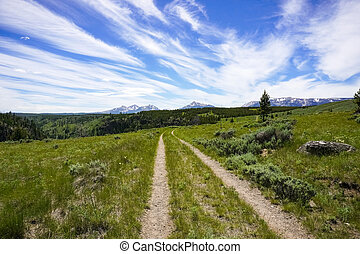 Trail in Yellowstone National Park, Wyoming