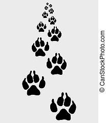 trail of dog