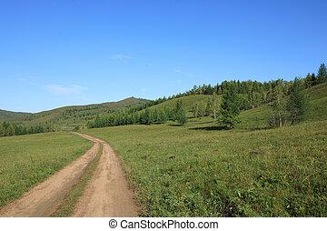 trail on green grassland under blue sky