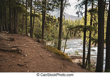 Trail Over McDonald Creek in Muted Colors