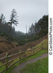 Trail to Indian Beach, Winter - Photo of the trail to Indian...