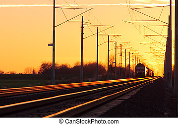 Train cargo in railroad at a sunset