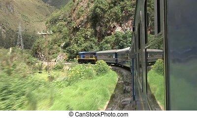 Train In Rainforest